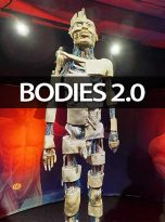 prod_bodies0