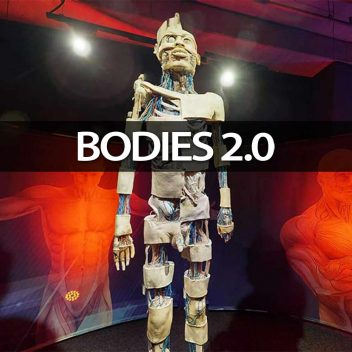 BODIES 2.0